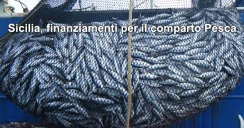 20170504_siciliapesca